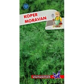Koper Moravan 5g