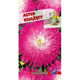 Aster książęcy różowy 1g