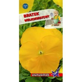 Bratek wielkokwiatowy kol.żółty 0,3g