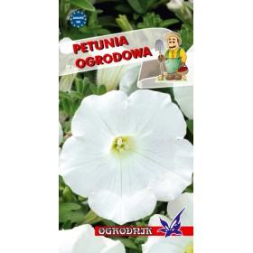 Petunia ogrodowa kol.biały 0,1g
