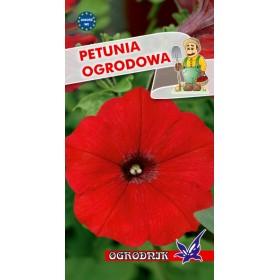 Petunia ogrodowa kol.czerwony 0,1g