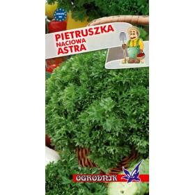 Pietruszka naciowa Astra 4g