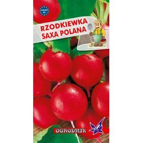 Rzodkiewka Saxa Polana