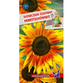 Słonecznik ozdobny Herbstschonheit 2g
